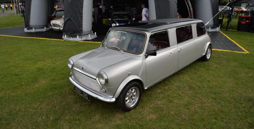 mini-limousine-imm